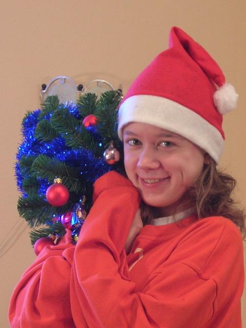 новогодний Санта-Гномик
