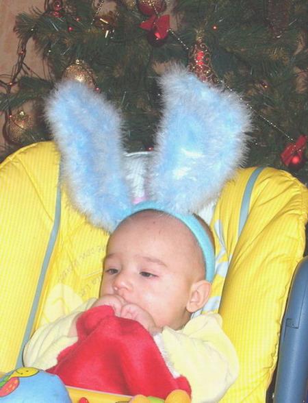 Трусишка-Зайка серенький под ёлочкой... доедает Деда Мороза&