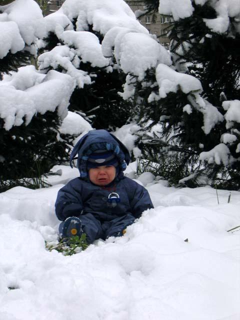 маленькой елочке холодно зимой...и Ромочке холодно