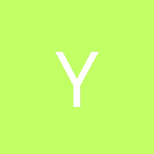 yogo***